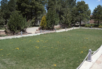 Photo of TWA gravesite at Citizen's Cemetery in Flagstaff, Arizona